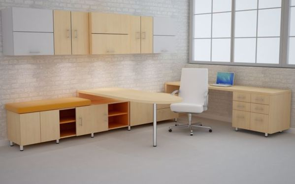 Rhea Modern Executive Desk and Credenza