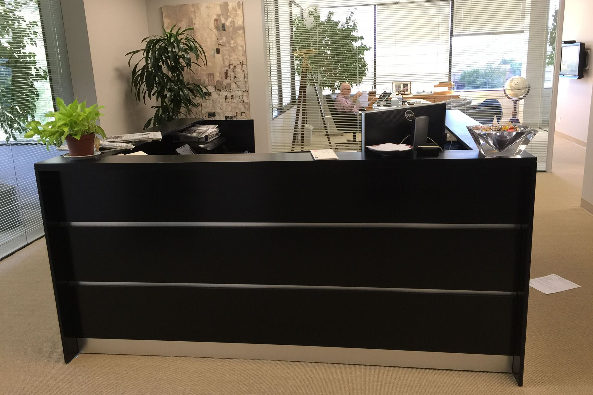 Albany Modern Reception Desk - Myra Hoefer Designs